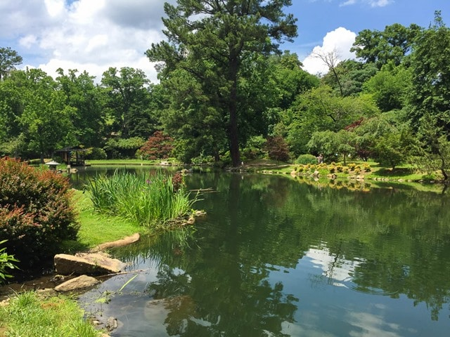 Japanese Gardens at Maymont in Richmond, VA - virginiasweeptea.com