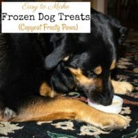 Easy to Make Frozen Dog Treats (Copycat Frosty Paws)