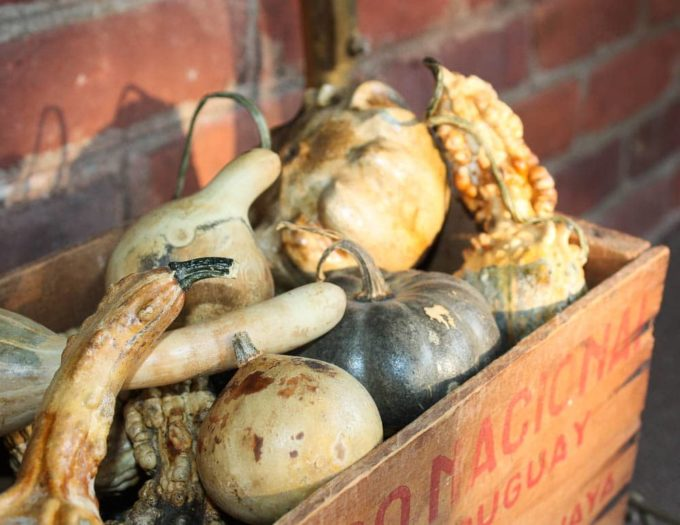 Dried Gourds in a Vintage Wooden Crate