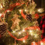 Extraordinary Christmas Trees