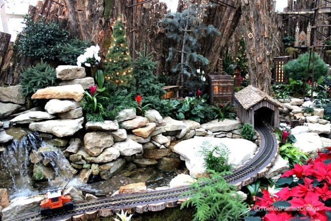 Meijer Gardens in Grand Rapids, MI decorated for Christmas
