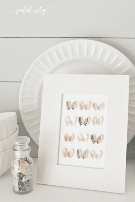 How to Make Seashell Specimen Art - Best of the Best Coastal DIY Decor Round-up. Get over a dozen coastal project decor ideas that you can make for your home. #coastal #coastaldecor #coastaldiy