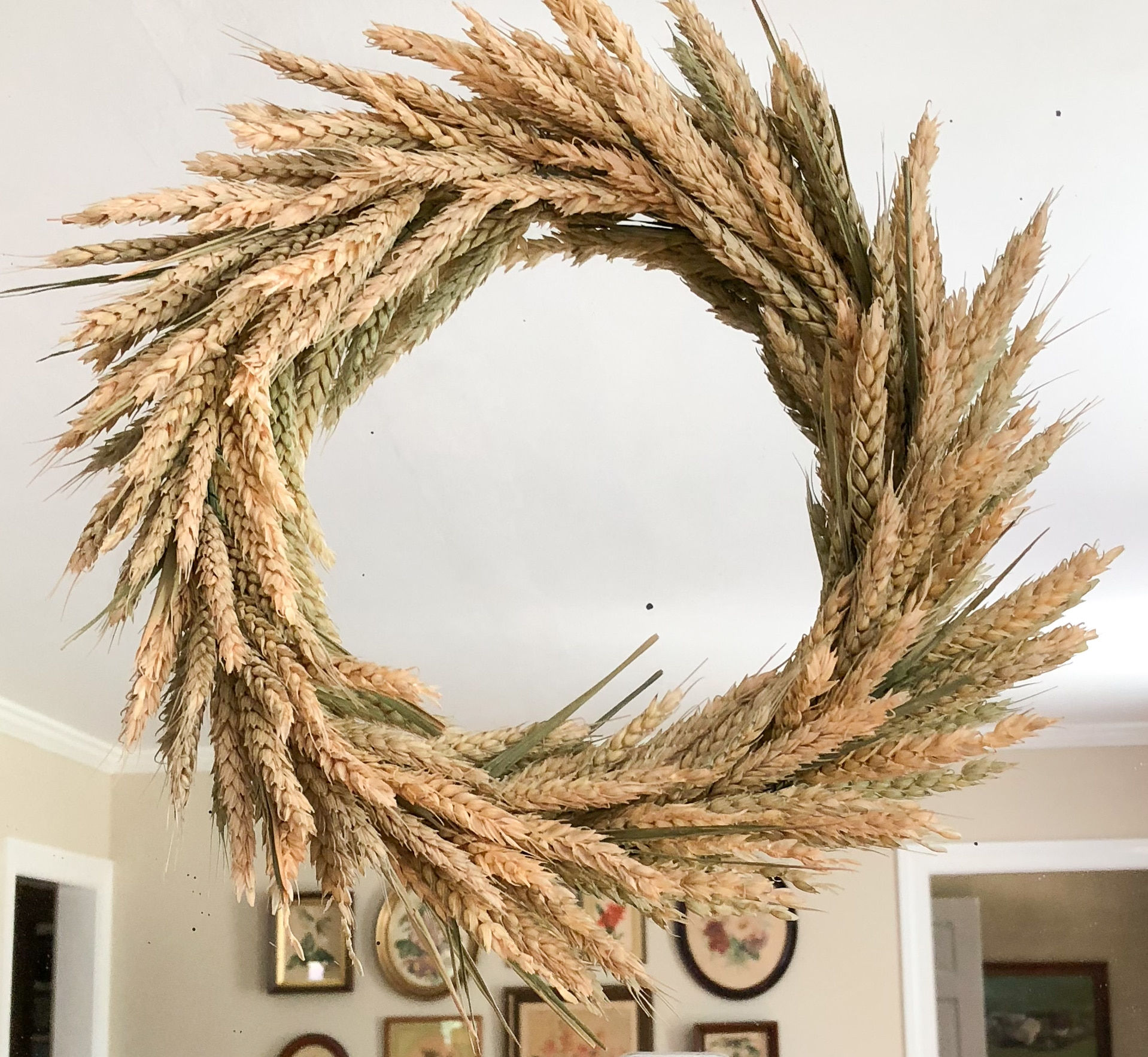 Learn how to make a wheat wreath for fall decor.