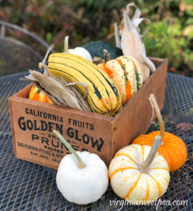 Fall Gourds and Pumpkins in a Vintage Box #fall #fallcenterpiece #pumpkins #gourds