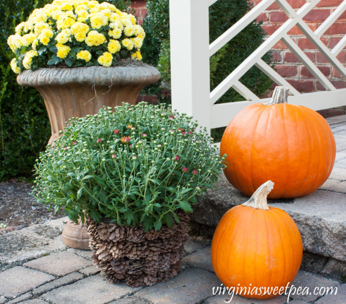 Fall Decorating Outdoors #fall #fallporch #fallporchdecor #falloutdoors