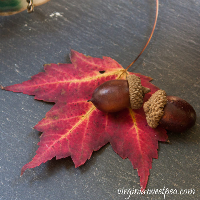 Sugar Maple Leaf from Vermont used in a Fall Vignette