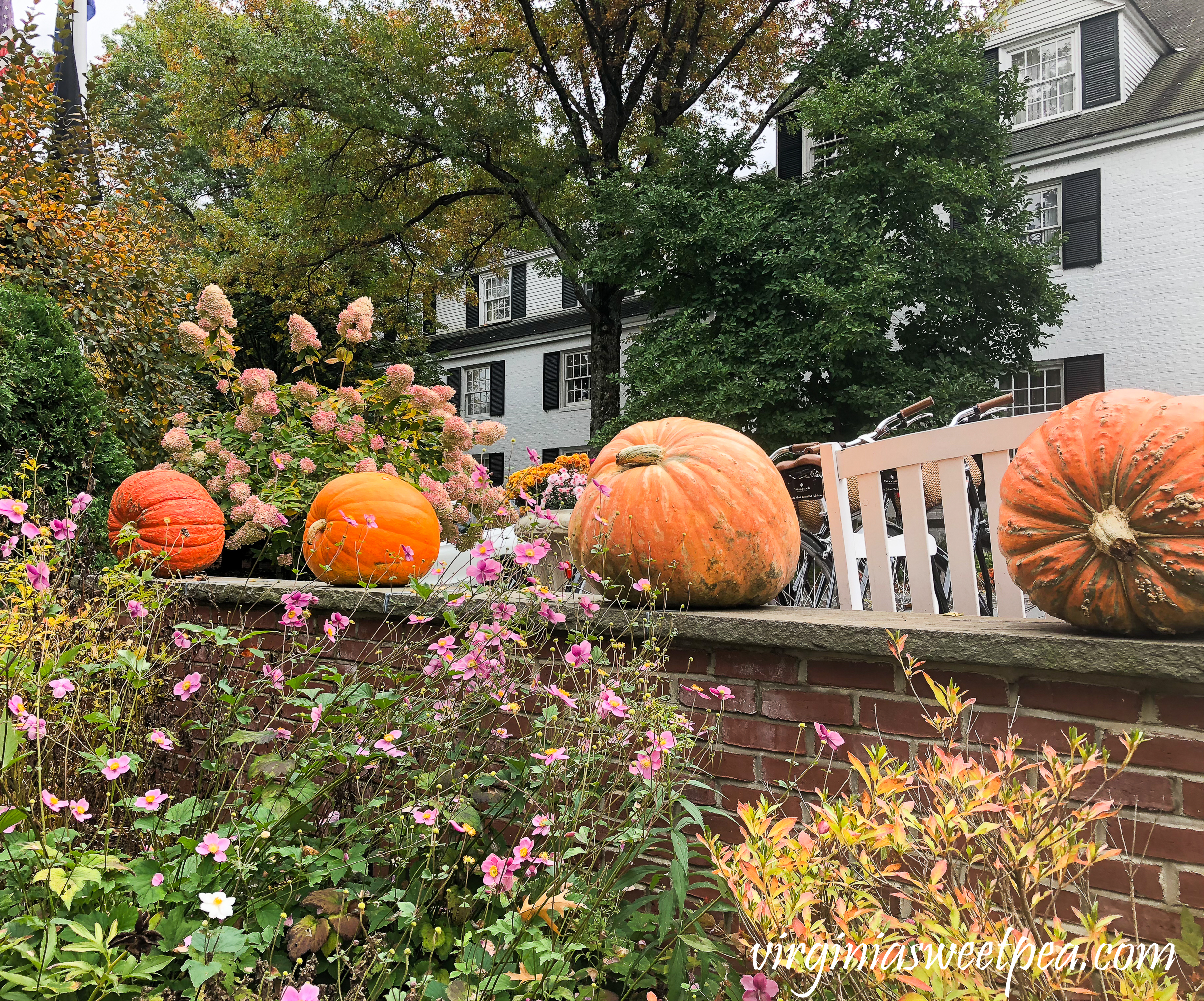 Fall at The Woodstock Inn in Woodstock, Vermont #vermont #fall #woodstockvermont #travel