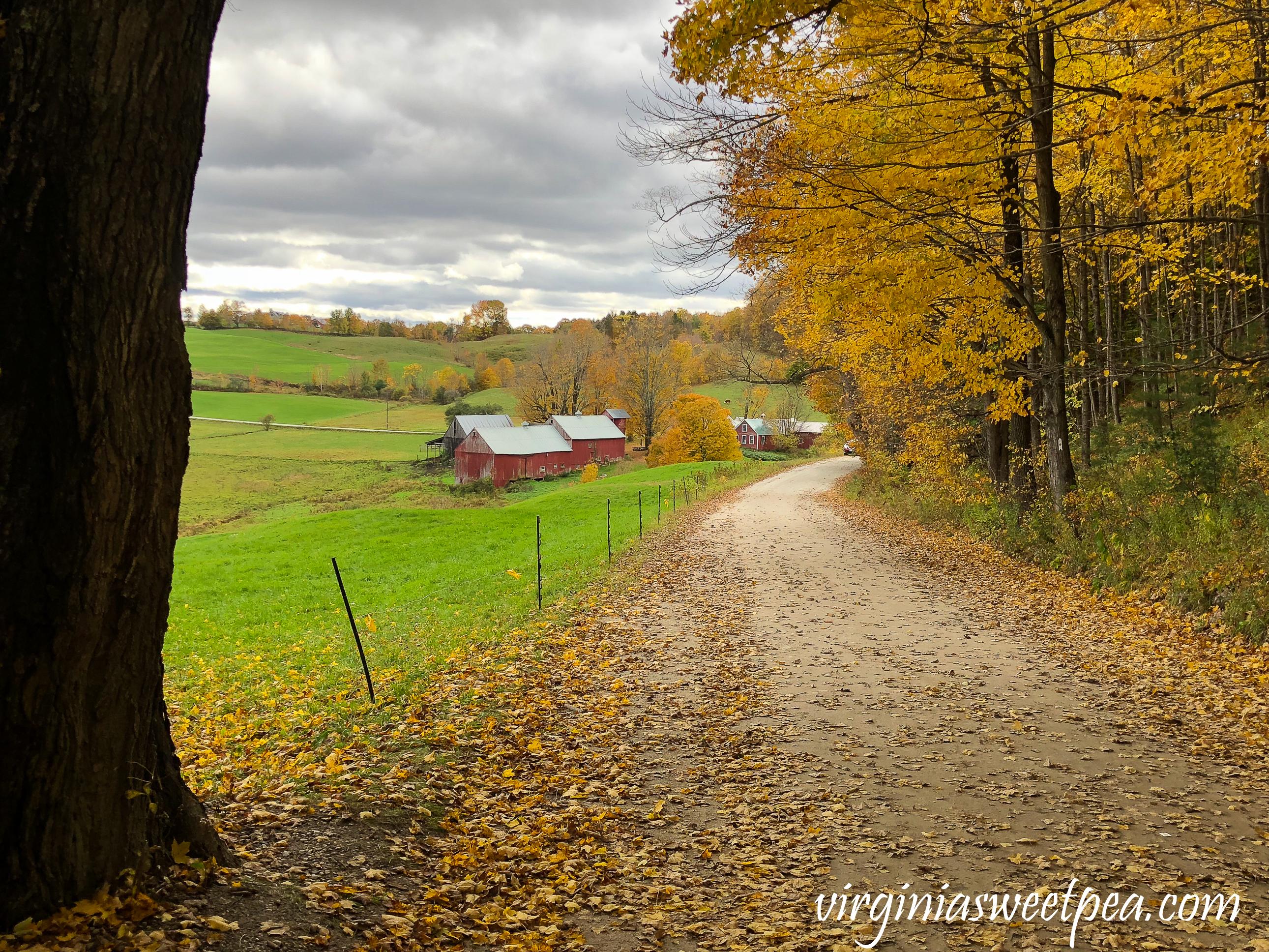 The Jenny Farm in Vermont #vermont #fallinvermont #fall