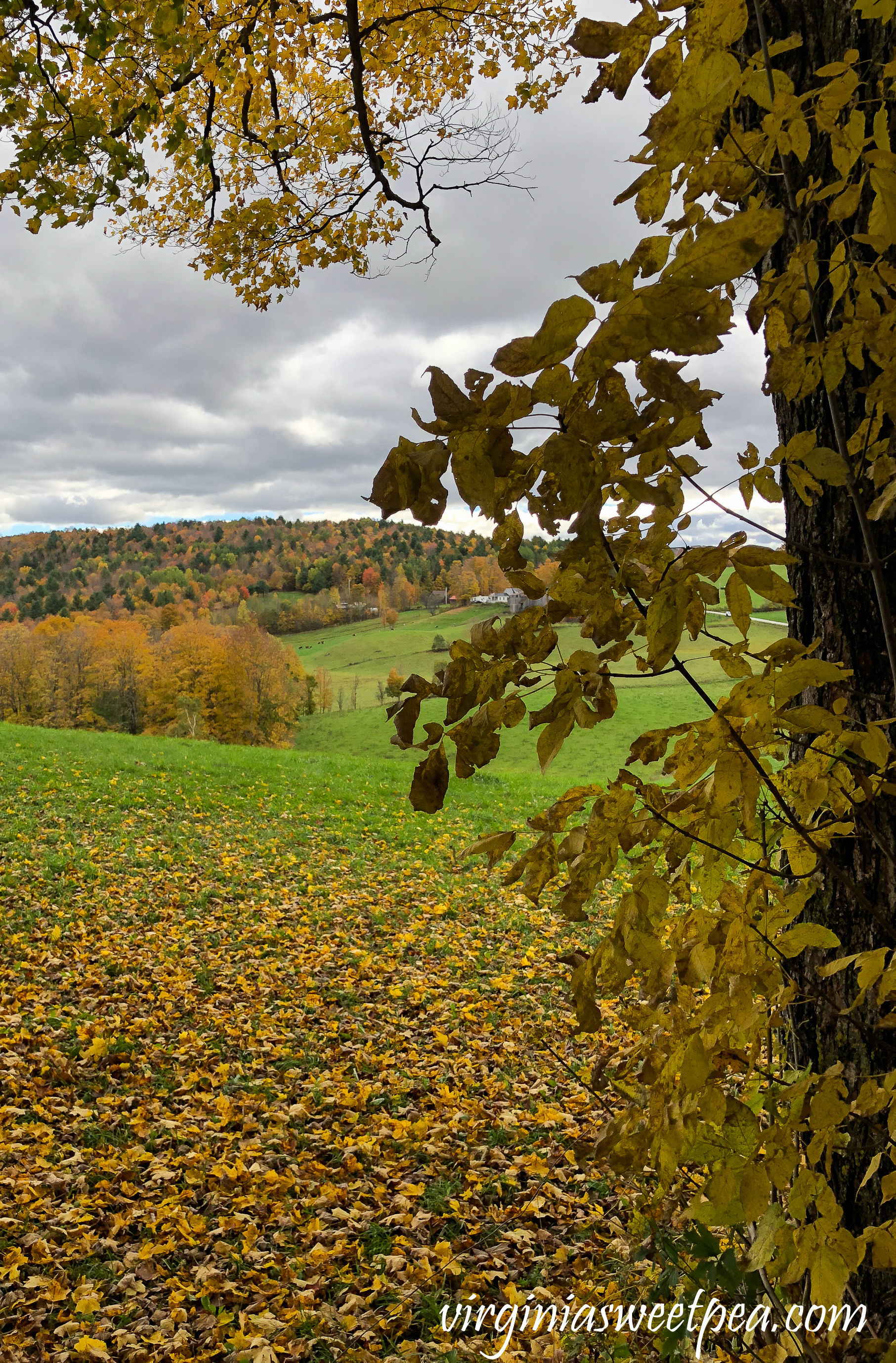 The Jenny Farm in Vermont #vermont #fallinvermont #fall