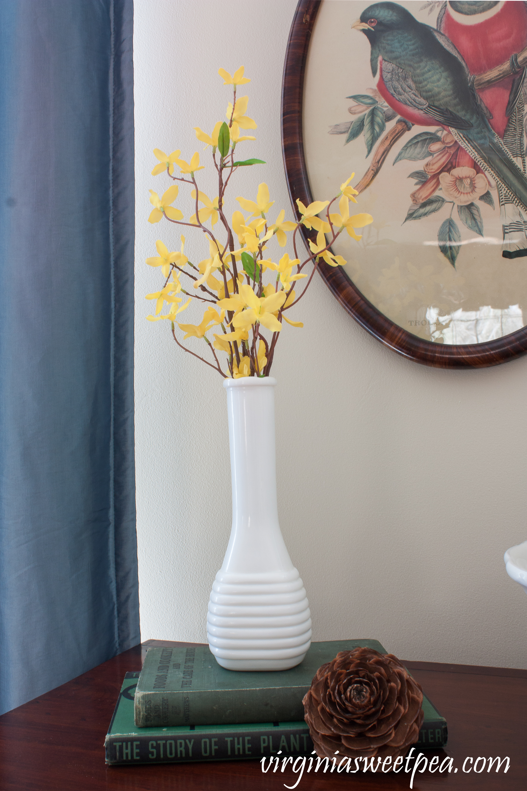 """A milk glass vase filled with faux Forsythia is elevated by two vintage books: A 1938 """"The Story of the Plant Kingdom"""" and a 1921 """"Foods and Cookery and The Care of the House"""" #springvignette #springdecor #vintagedecor #milkglass"""