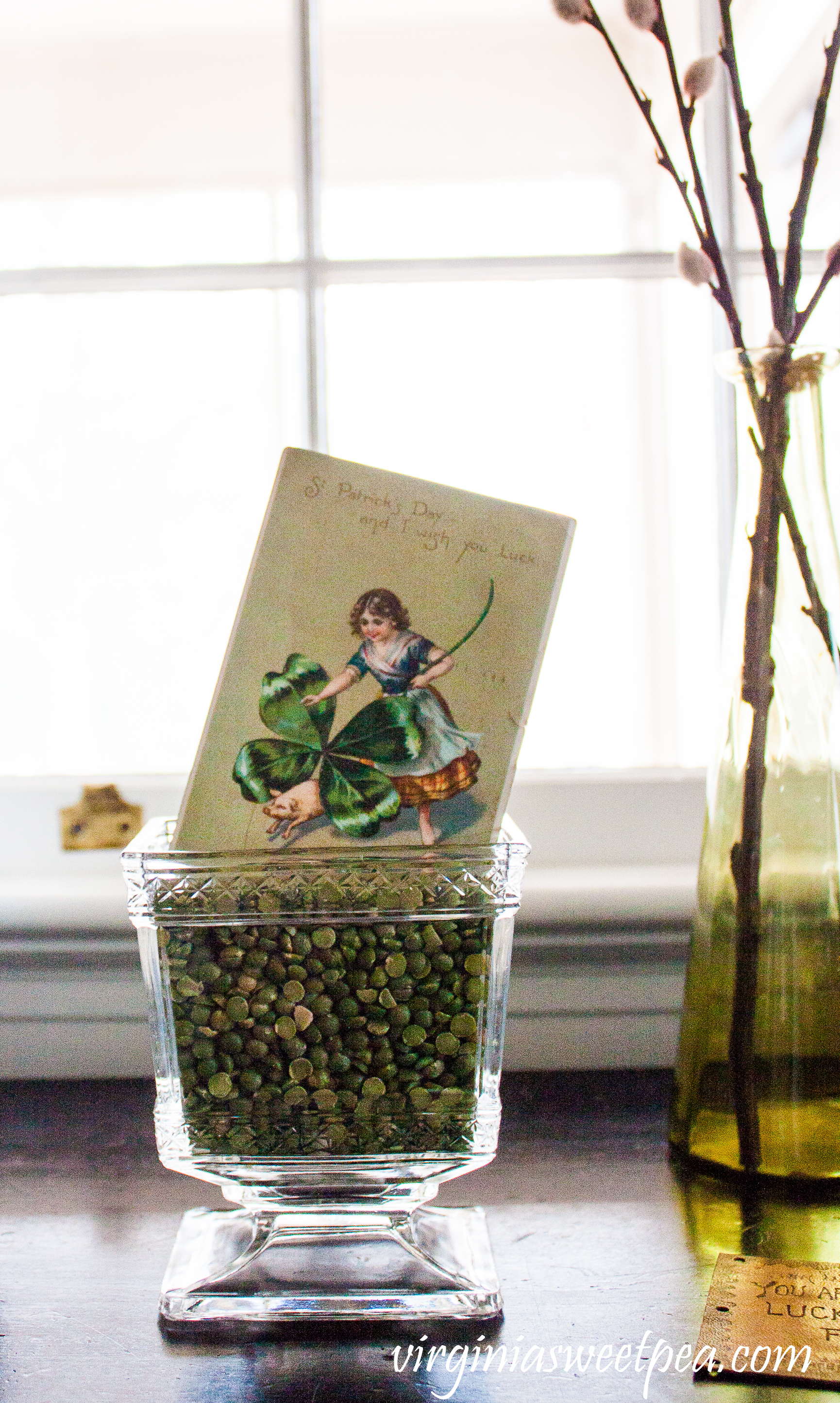 1908 St. Patrick's Day postcard displayed in an antique glass compote filled with split peas. #antiquepostcard #antiquestpatricksdaypostcard #vintagedecor