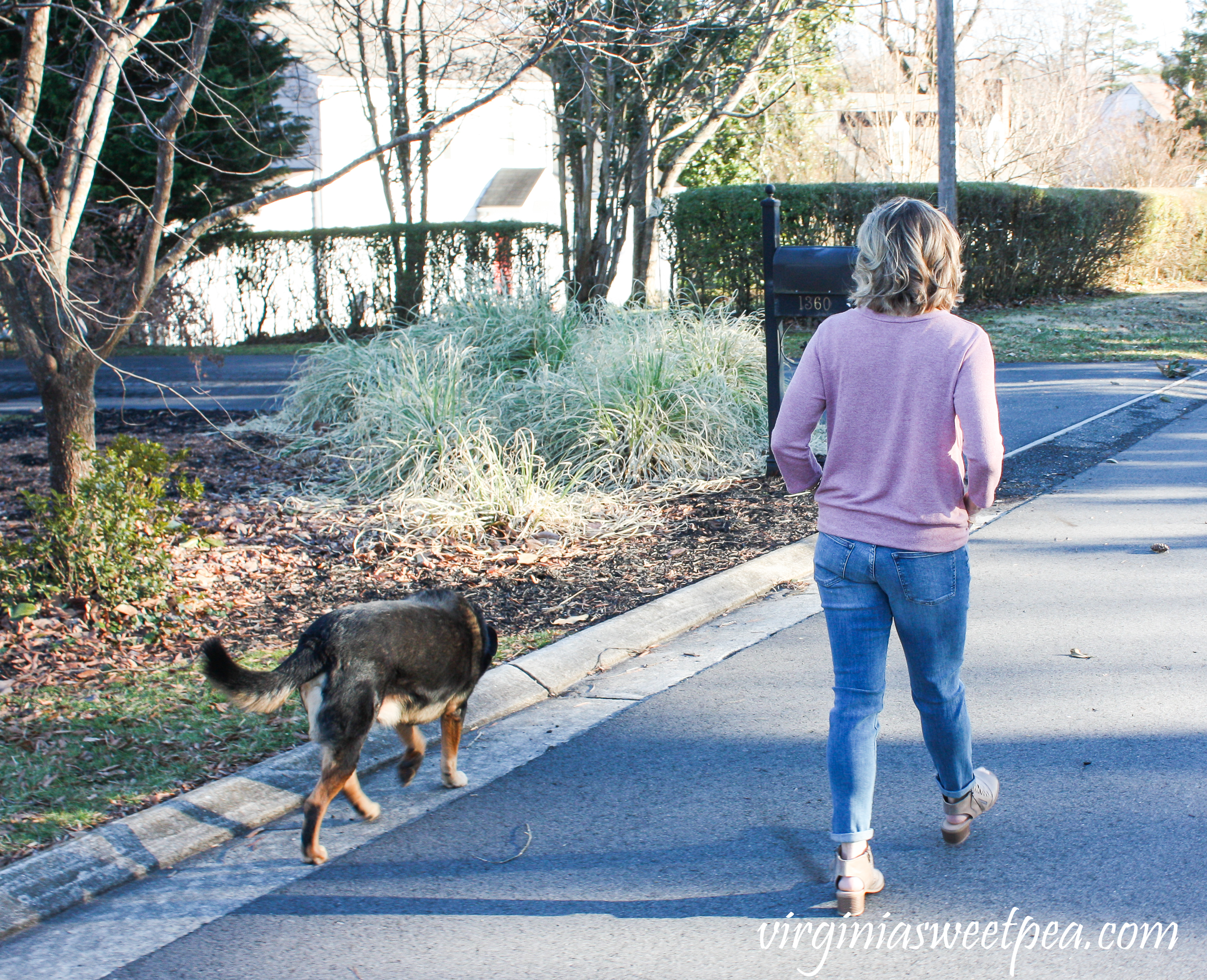 Stitch Fix Review for March 2019 - Warp + Weft Jenny Straight Leg Jean with Kaileigh Francine Tie Front Knit Top #stitchfix #stitchfixreview #stitchfix2019 #stitchfixspring #stitchfixjeans #shermanskulina
