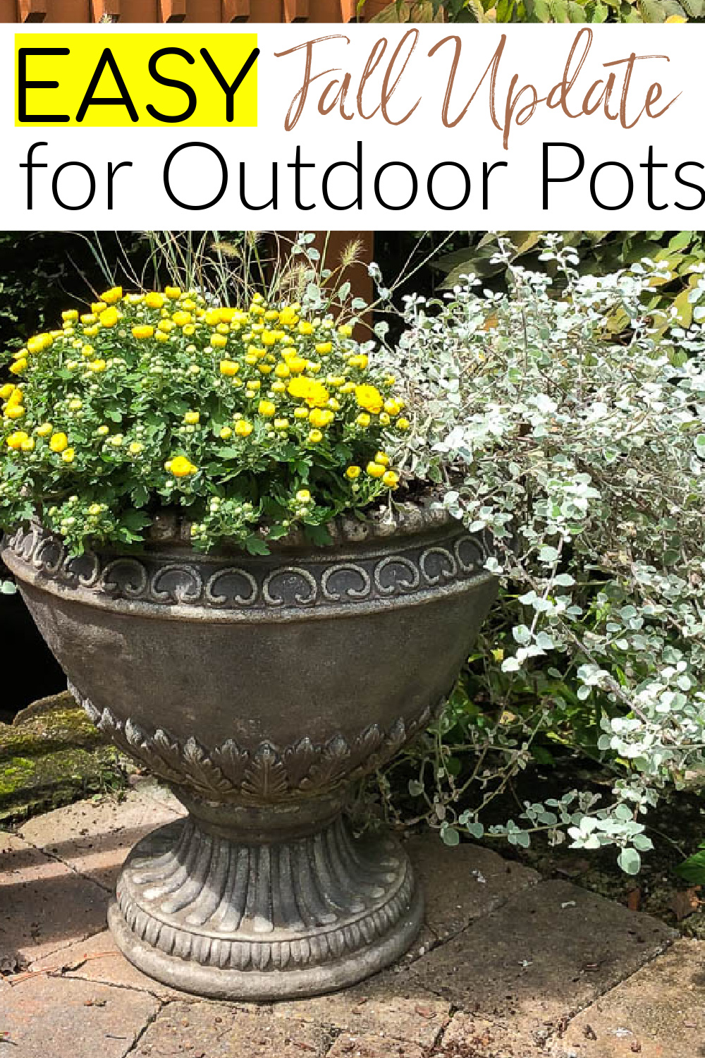 Easy Fall Update for Outdoor Pots - Learn how to quickly and easily update your outdoor pots from summer to fall.  #gardening #outdoorpots #fallannuals #DIYgardening via @spaula