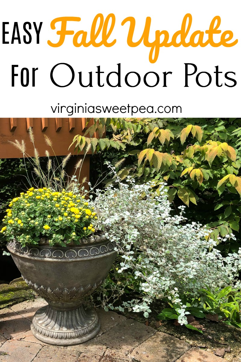 Easy Update for Outdoor Pots