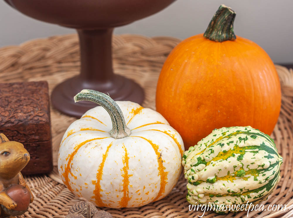 Pumpkins and gourds used in fall decor