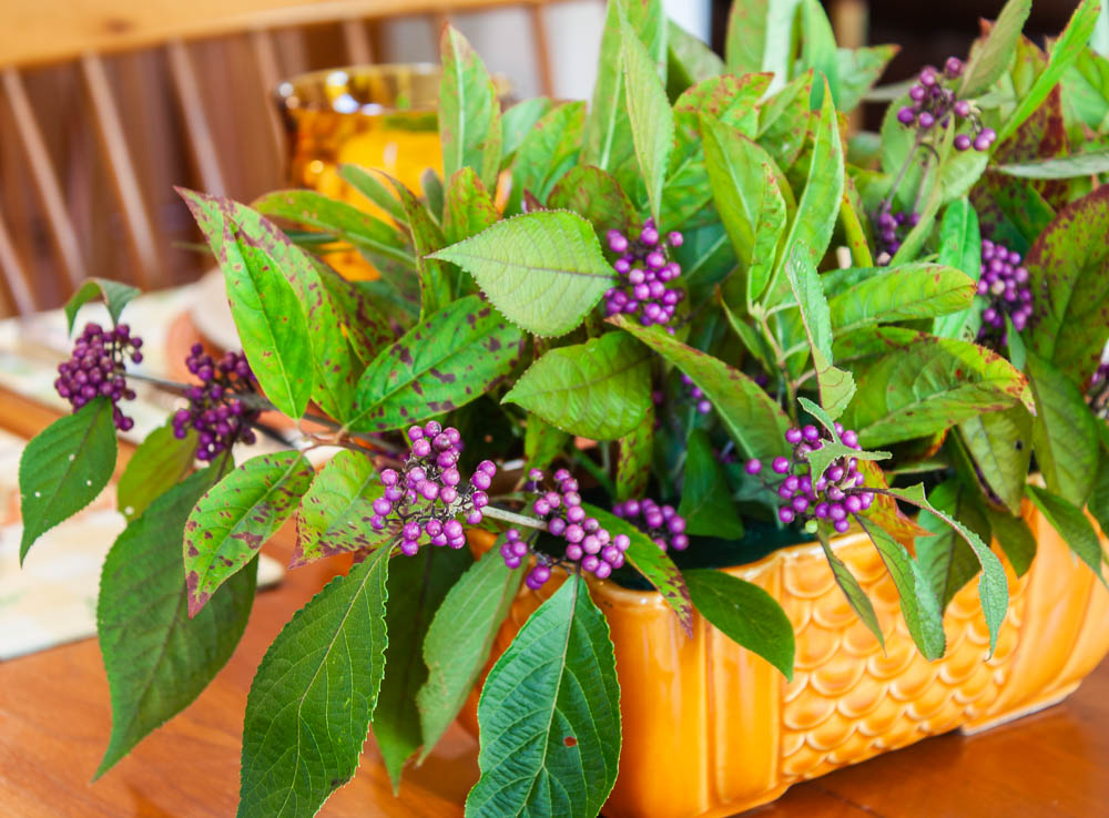 Centerpiece with Beautyberry and Virginia Sweetspire