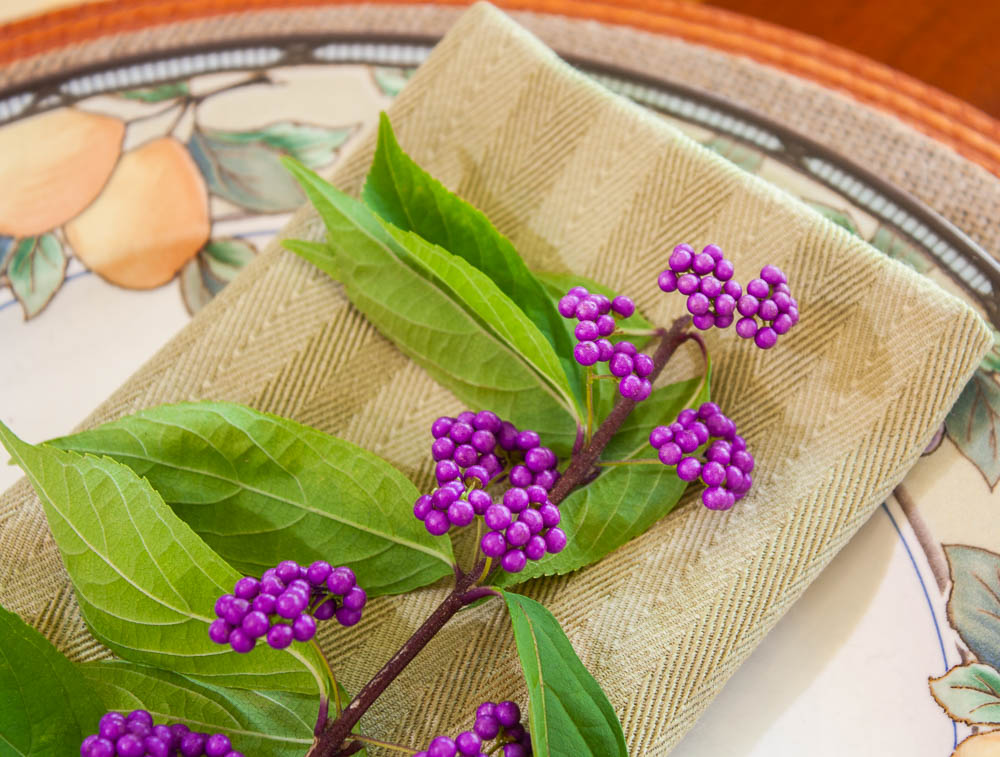 A sprig of Beautyberry on a napkin on a Mikasa Garden Harvest plate