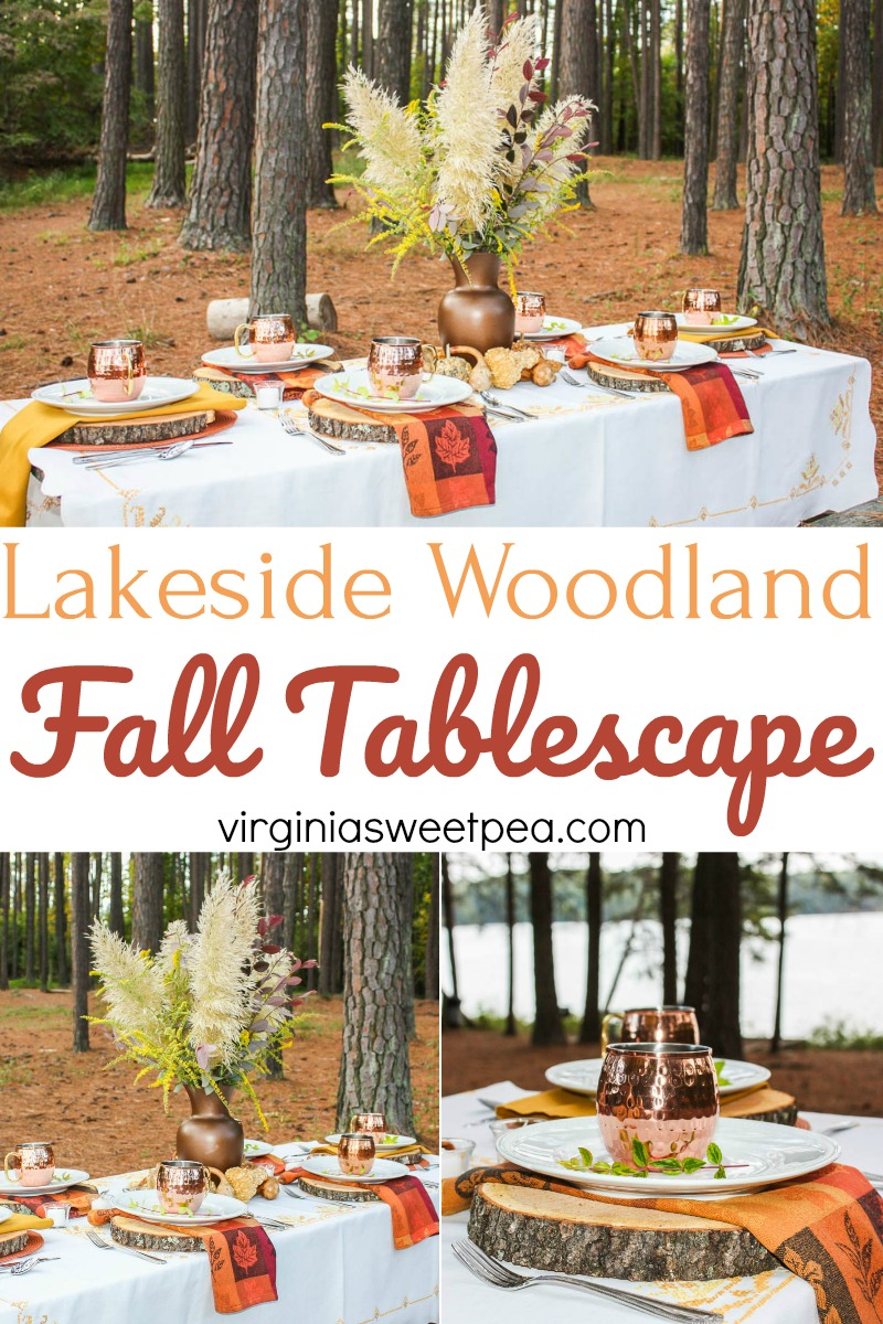 Lakeside Woodland Fall Tablescape - This charming fall table is set for a picnic on the shore of Smith Mountain Lake in Virginia. #tablescape #falltablescape #smithmountainlakeva #falldecor #falldecorating via @spaula