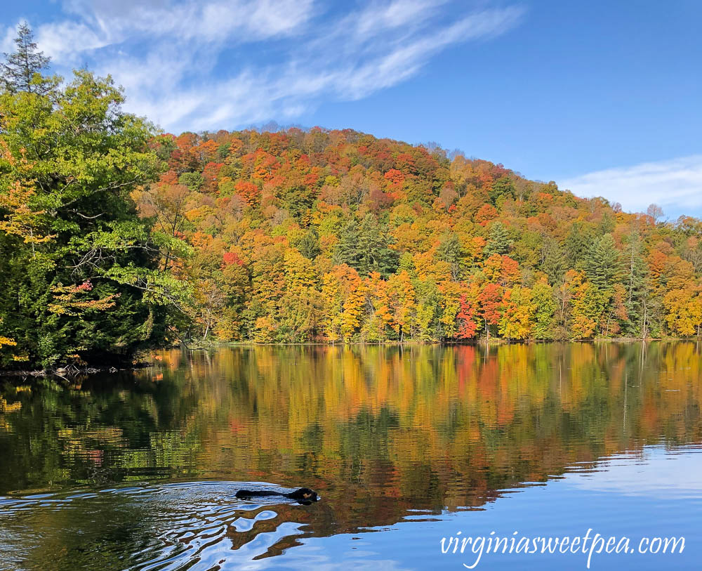 The Pogue in fall in Woodstock, Vermont