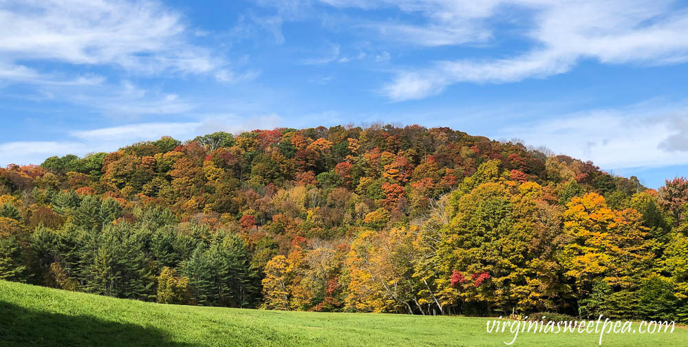 Fall Foliage in Woodstock, Vermont