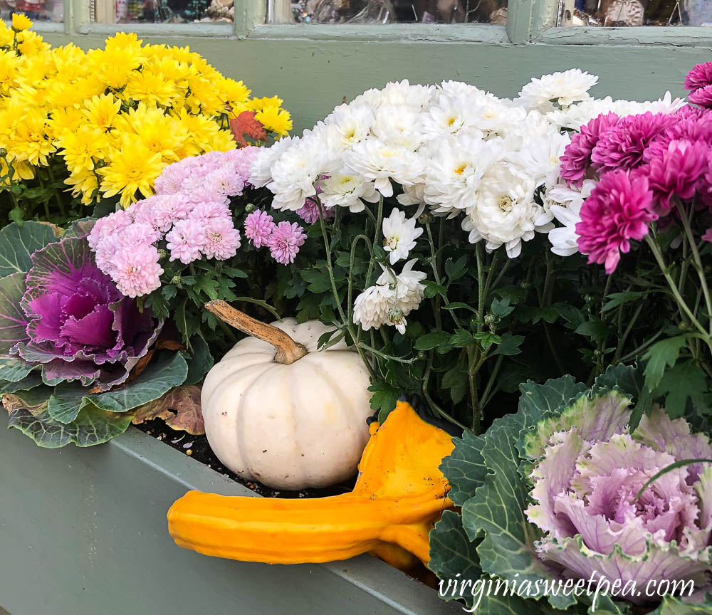 Fall window box in Woodstock, Vermont