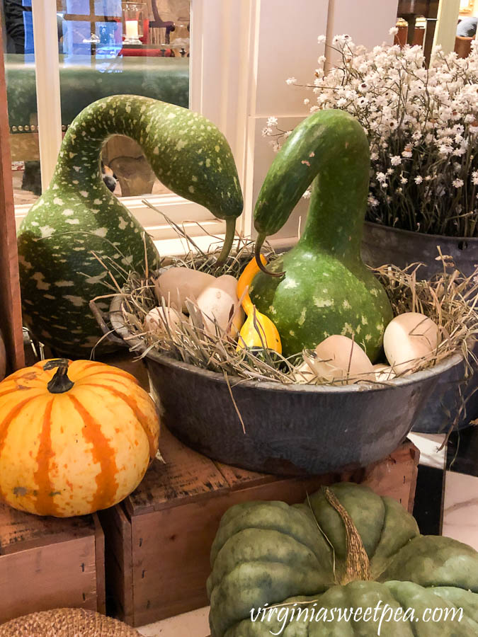 Swan gourds with egg gourds at the Woodstock Inn in Woodstock, Vermont