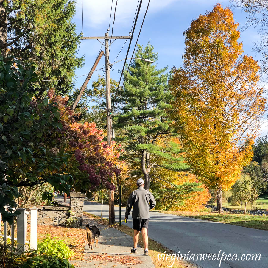Sherman and David Skulina in Woodstock, Vermont with fall foliage