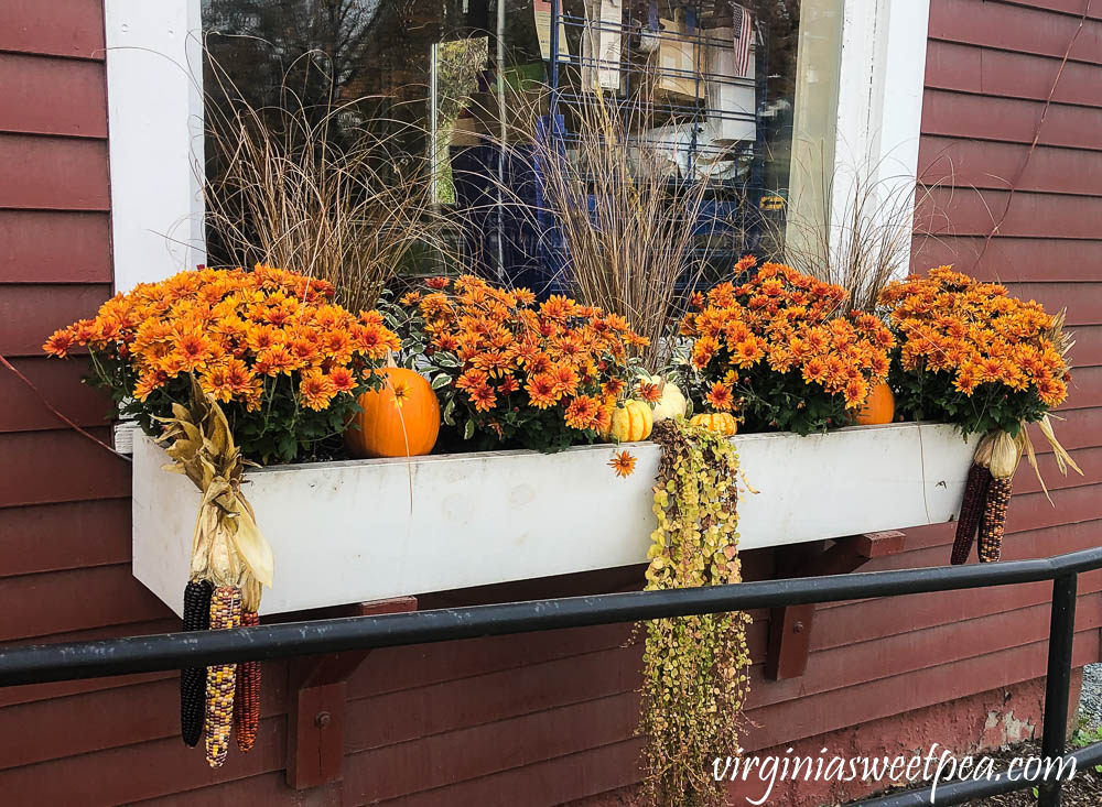 Window Box in fall in Vermont