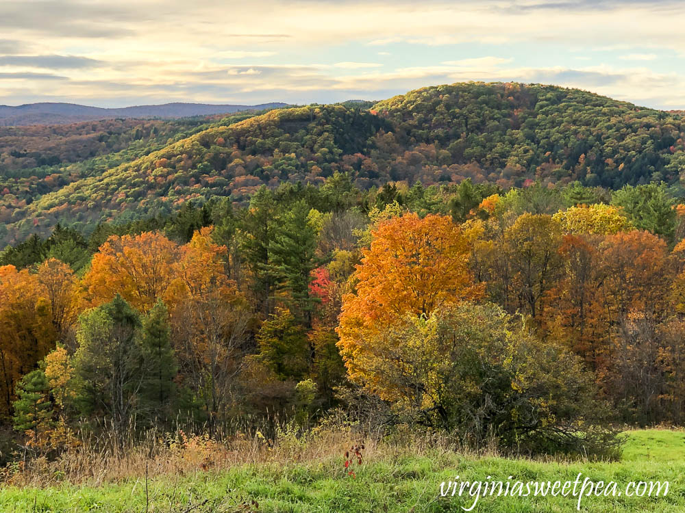 Fall foliage on the top of Mt. Peg in Woodstock, VT