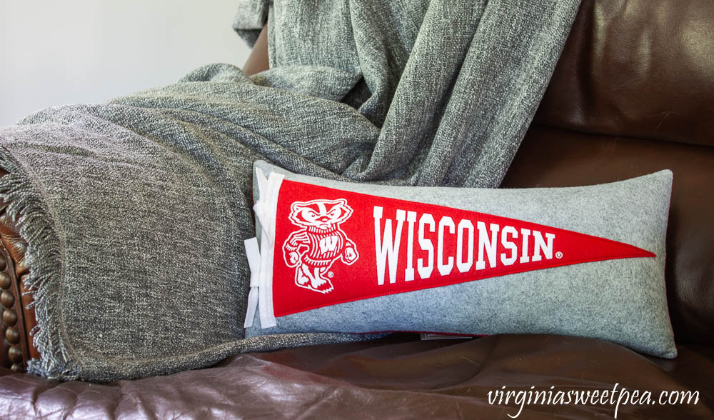 Wisconsin Pennant Pillow