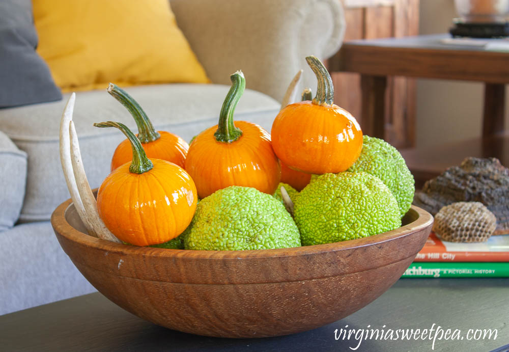 Coffee table decorated for fall with vintage with a wooden bowl filled with osage orange balls and small pumpkins.