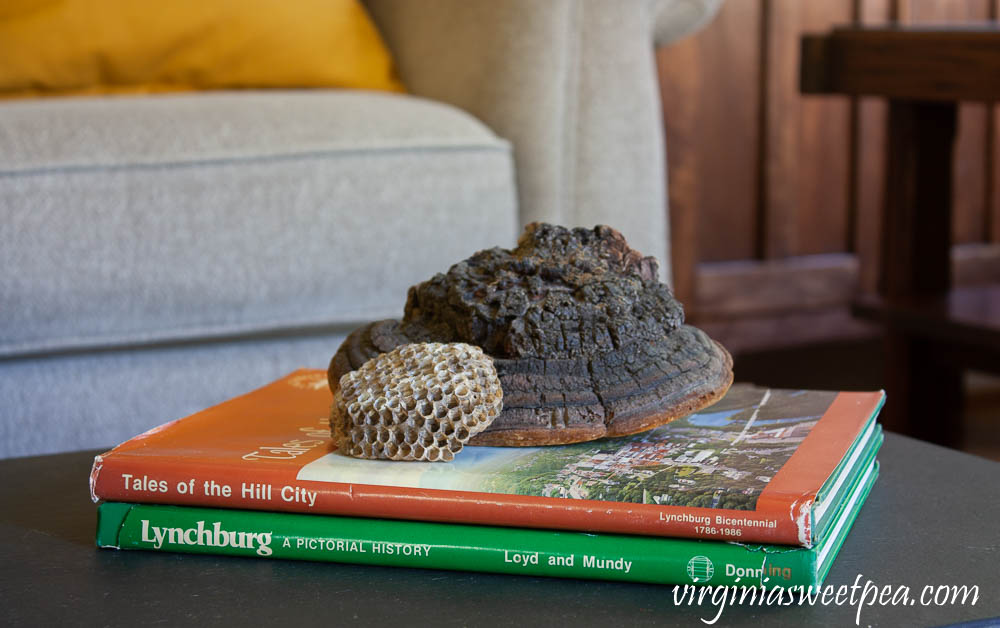 Two Lynchburg, Virginia books, Tales of the Hill City and Lynchburg, A Pictorial History are used in a fall vignette with a dried shelf fungus and a wasp nest.