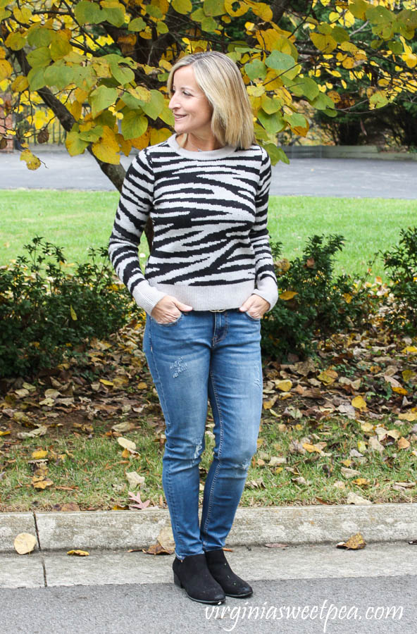 Stitch Fix Design History Litha Crewneck Pullover with Vigoss Elaine Distressed Girlfriend Jean