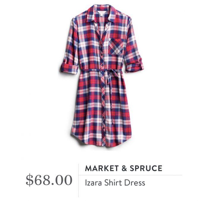 Market & Spruce Izara Shirt Dress