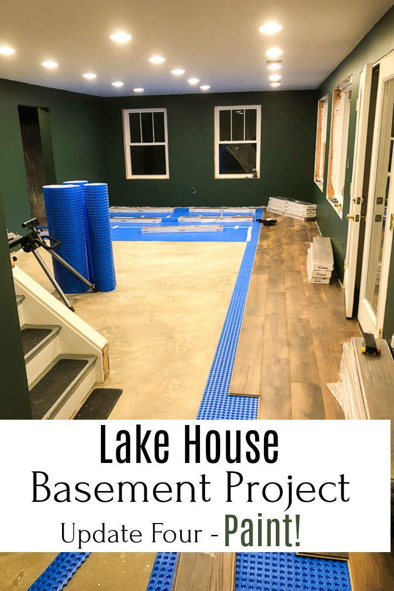 An unfinished basement is being transformed into usable space that includes a family room, bathroom, and bedroom.  This update shares the paint used in each room.  #smithmountainlake #basementproject #finishingabasement #sherwinwilliams #sherwinwilliamsrockgarden via @spaula