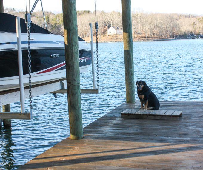 Sherman Skulina wants to go boating at Smith Mountain Lake