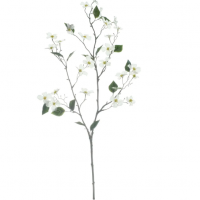 White Mini Dogwood Stem by Ashland®