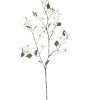 White Mini Dogwood Stem by Ashland®