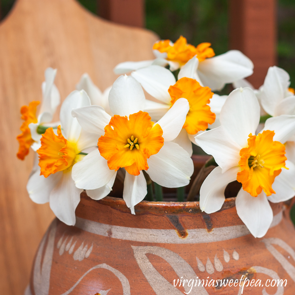 Spring Daffodils in handmade pottery jug