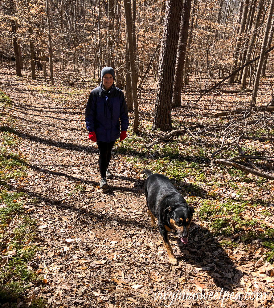Hiking in Smith Mountain Lake State Park