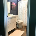 Lake House Basement Bathroom Reveal