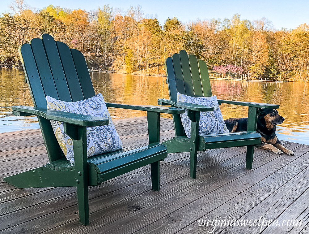 Two adirondack chairs on a dock with pillows and a dog