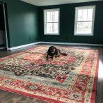 Lake House Basement Project – Update Fourteen