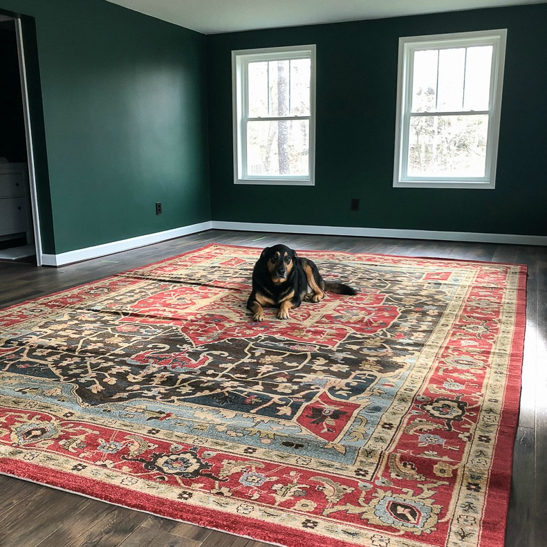 Sherman Skulina on Wayfair Rug at Smith Mountain Lake