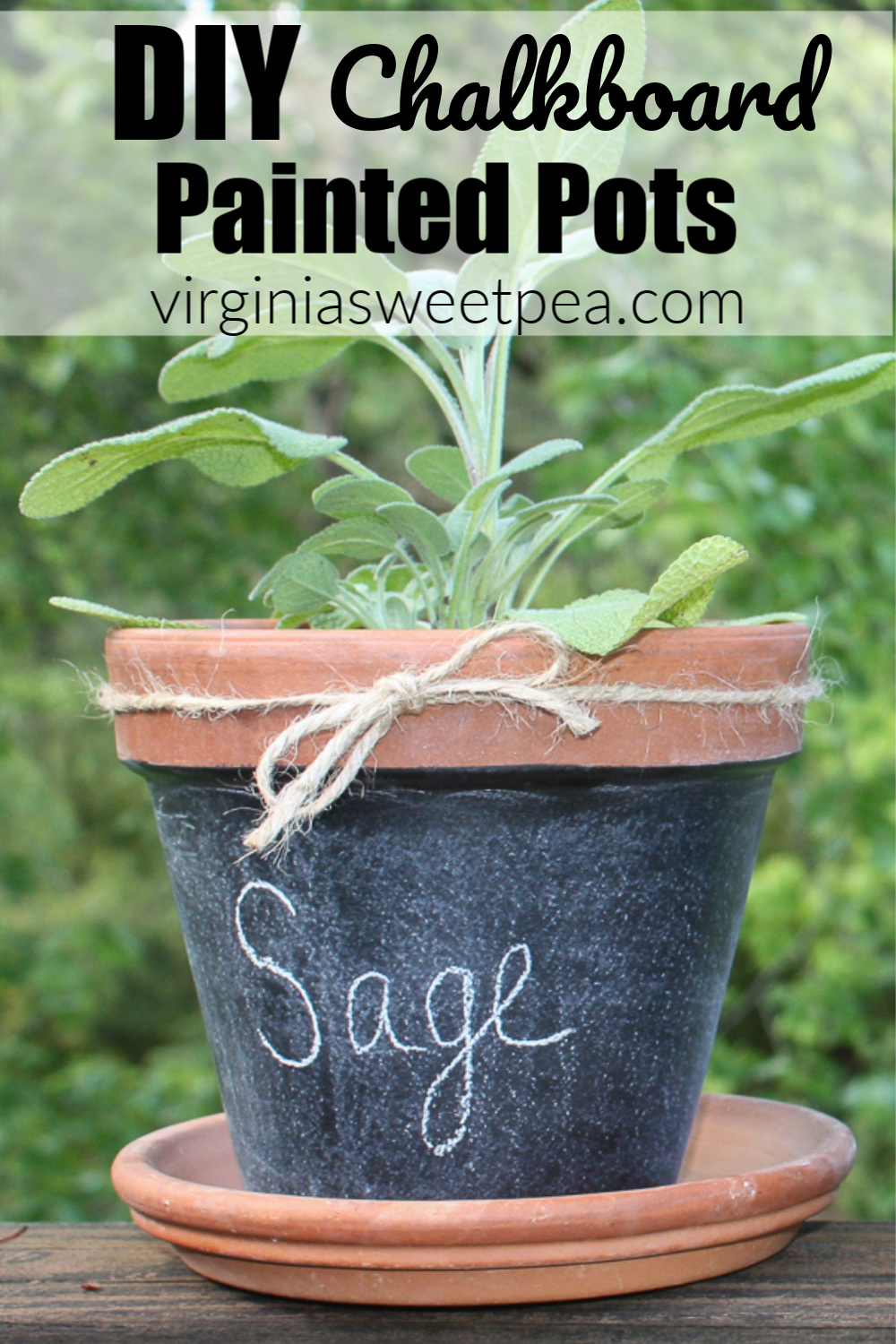 How to Make Chalkboard Painted Pots - Learn how to make chalkboard painted pots. Plant herbs, vegetables, or flowers and use chalk to label the pot. #chalkboardproject #chalkboardpots #herbpots via @spaula