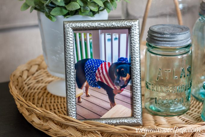 picture of a dog in an Uncle Sam costume with atlas strong arm mason jar