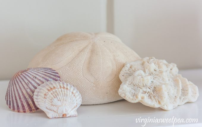 Coral, scallop shells, and a sea biscuit on a coastal themed summer mantel.