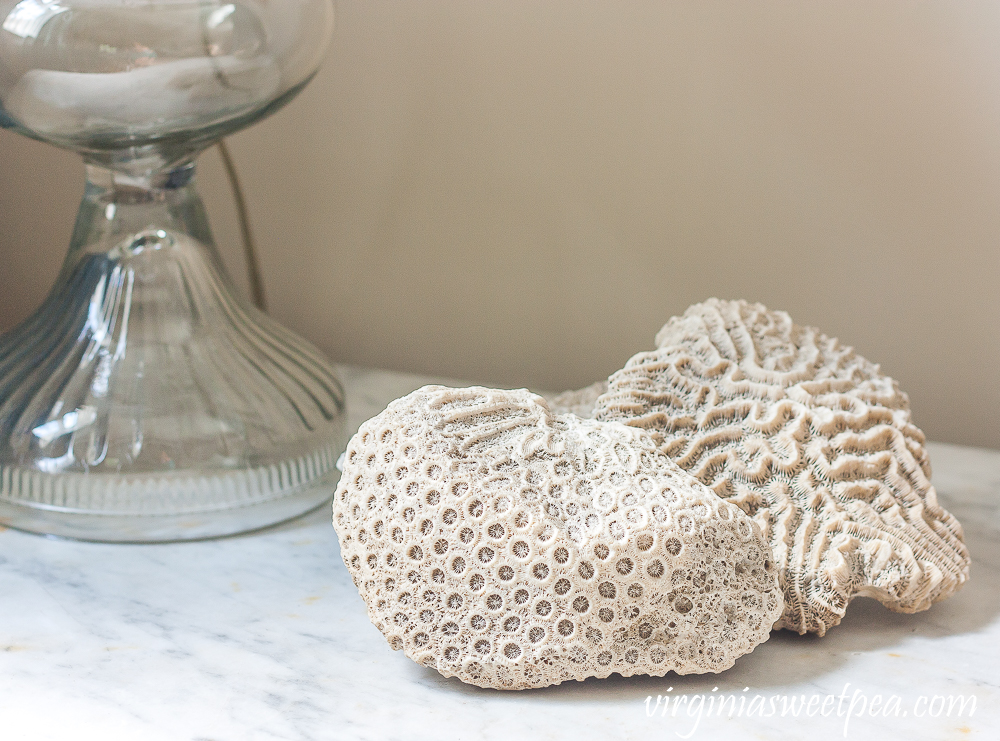 Coral used for summer decor