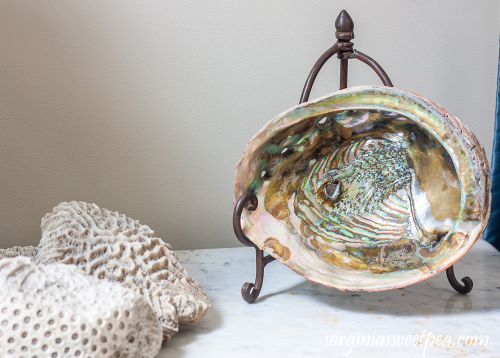 Abalone Shell used for summer decor