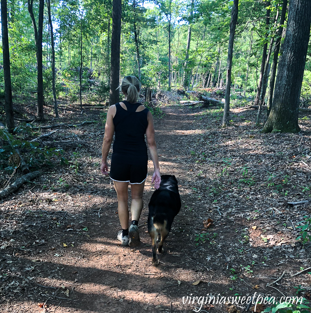 Hiking with Sherman Skulina in Smith Mountain Lake State Park